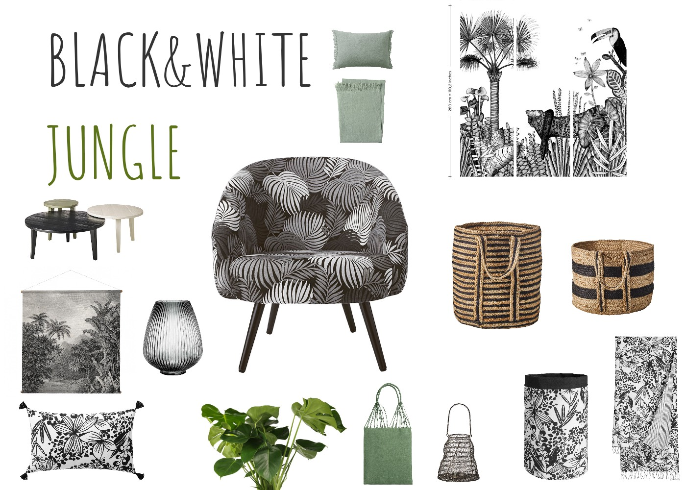 Black&White Jungle