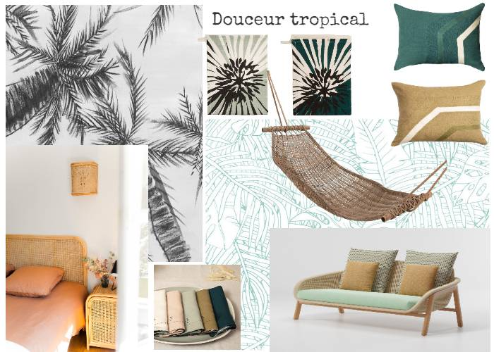 Douceur Tropical