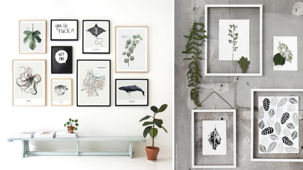 tendance les herbiers de notre enfance sont de retour actualit s par cendrine domingez. Black Bedroom Furniture Sets. Home Design Ideas
